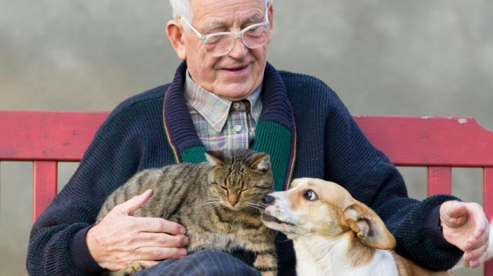 man-with-cat-and-dog