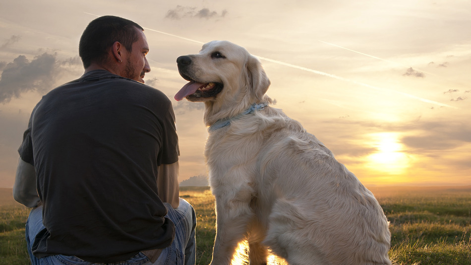 man_and_dog_zoonotic_diseases